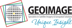 Geoimage-Unique-Insight-log